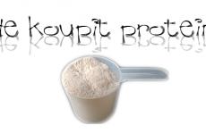 Kde koupit protein